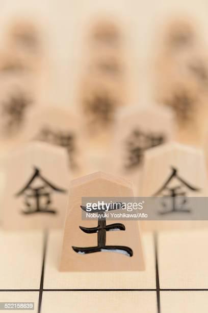 Japanese Chess Shogi