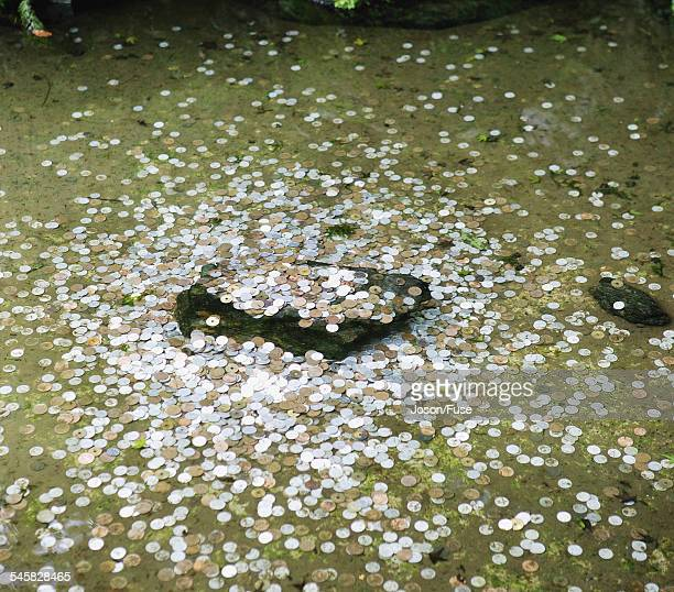 Japanese Coins in Water Pond, Ryoanji Temple, Kyoto, Japan