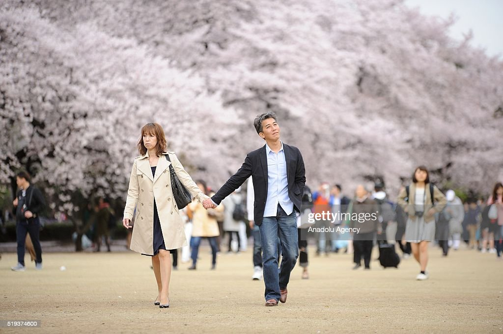 Japanese couple are seen walking the last beautiful day of Hanami, a traditional picnic between family, friends or colleague to enjoy the cherry blossom and the poetry of the moment in Tokyo Shinjuku Park, Japan on April 6, 2016.