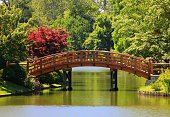 A beautiful bridge in a Japanese garden.