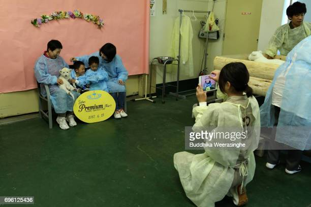 Japanese family plays with newly born twin white lion cub as poses a picture during the fifth day of Lion Cub Premium Tour program at an animal...
