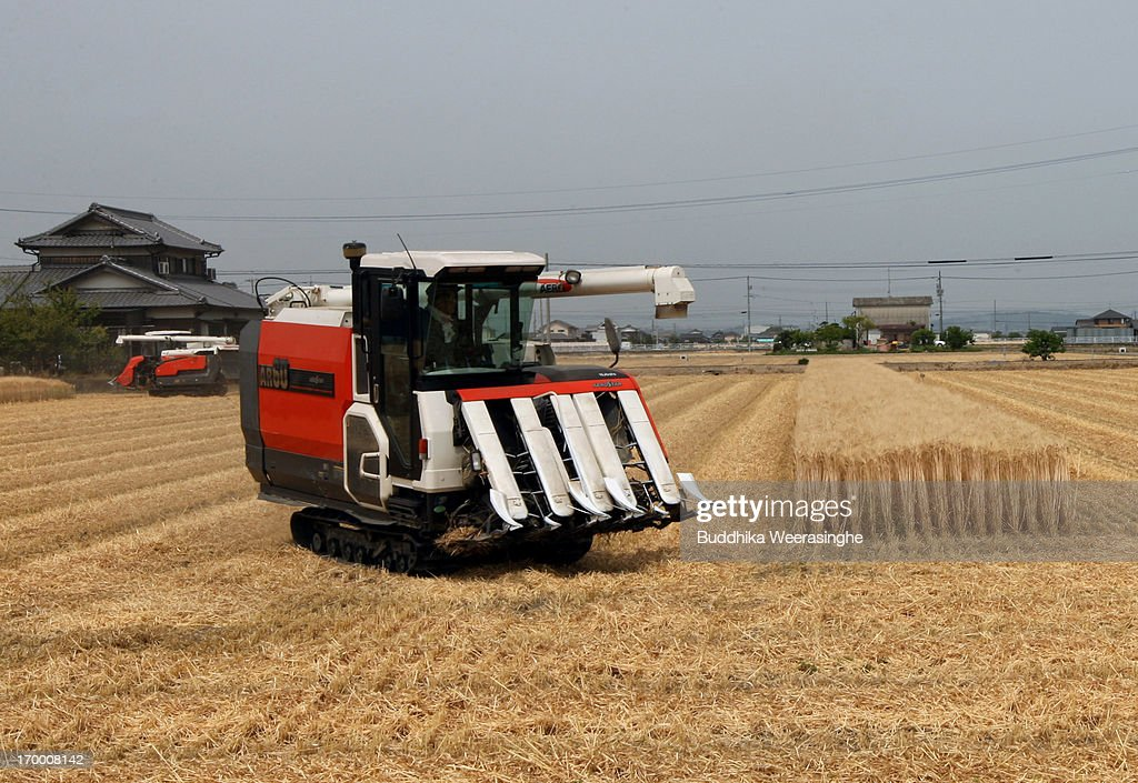 A Japanese farmers harvest wheat with a combine harvester in a field at the start of wheat harvesting season on June 6, 2013 in Okayama, Japan. Japan is the world's sixth-biggest wheat buyer and imports around 800,000 tonnes each year, 60 percent of which is from the US.