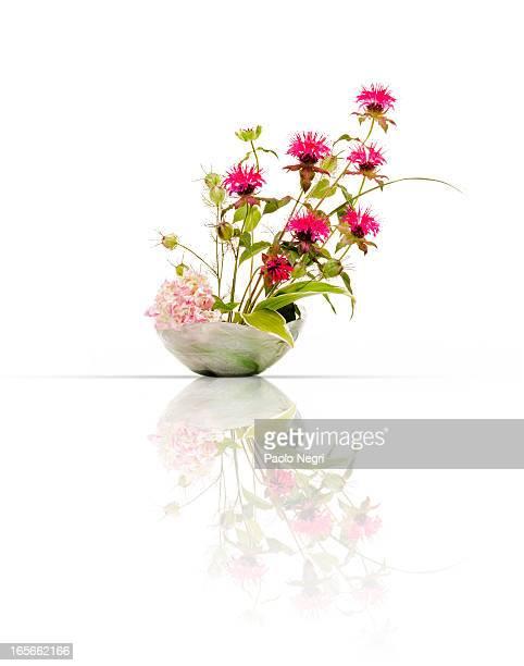 Japanese flower arrangement, ikebana