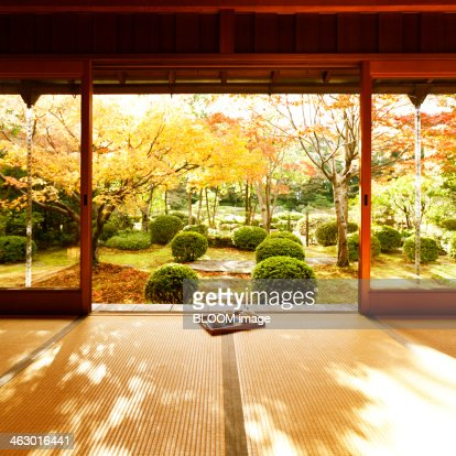 Japanese Garden From The Porch