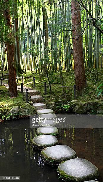 Japanese garden stone path over pond