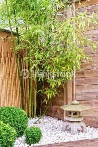Japanischer Garten Mit Bambus Und Stein Laterne Stock Foto Thinkstock