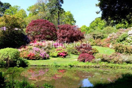 Japanese Garden With Koi Pond Maples Azaleas And Bamboo