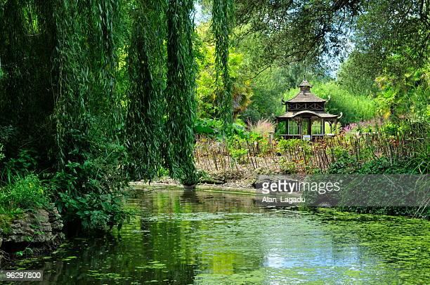 Japanese garden,Jersey.