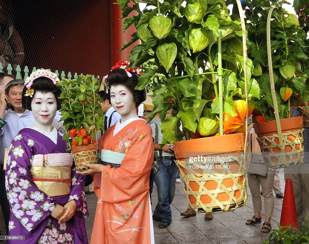 Japanese geisha Yanagi (R) and Chiyo hold a pot of 'hozuki' or Chinese lantern plant at Tokyo's Sensoji temple on July 8, 2010 at the preview for the promotion of the annual two-day Chinese lantern plant fair held July 9-10. The plants are considered part of early summer's poetic scenery in Japan and some 500,000 people are expected to visit the fair. AFP PHOTO/Yoshikazu TSUNO