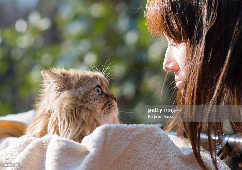 Japanese girl looking at cat : Stock Photo