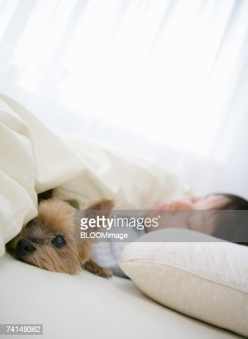 Japanese girl sleeping beside dog in bed in the morning for Dog bed beside bed