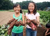Japanische Mädchen holding süße Kartoffeln