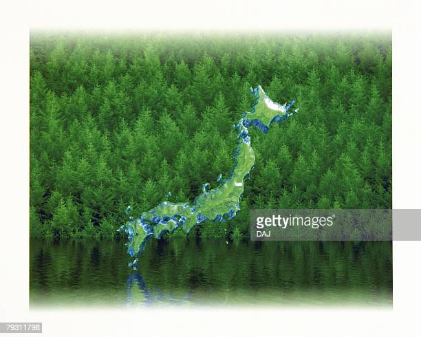 Japanese Islands in Forest, High angle view, Composite