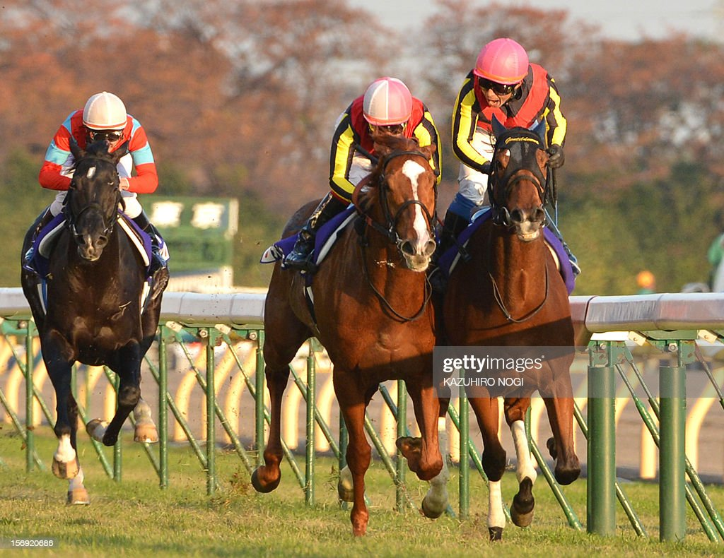 Japanese jockey Yasunari Iwata on Gentildonna (R) fights with Orfevre (C) ridden by Kenichi Ikezoe to win the 2,400-metre (1.5 mile) Japan Cup horse race at the Tokyo Race Course on November 25, 2012. Gentildonna edged past Prix de l'Arc de Triomphe runner-up Orfevre by a nose to become the first three-year-old filly to win the Japan Cup horse racing.
