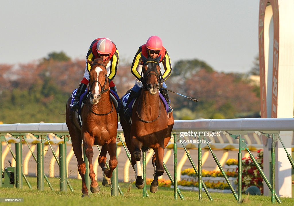 Japanese jockey Yasunari Iwata on Gentildonna (R) races against Orfevre (L) ridden by Kenichi Ikezoe to win the 2,400-metre (1.5 mile) Japan Cup horse race at the Tokyo Race Course on November 25, 2012. Gentildonna edged past Prix de l'Arc de Triomphe runner-up Orfevre by a nose to become the first three-year-old filly to win the Japan Cup horse racing.