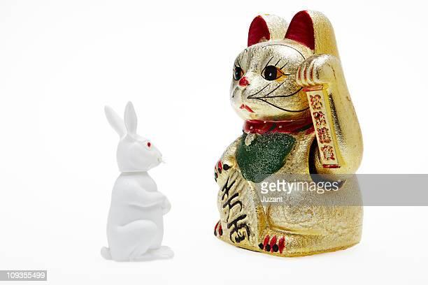 Japanese lucky cat opposite Rabbit