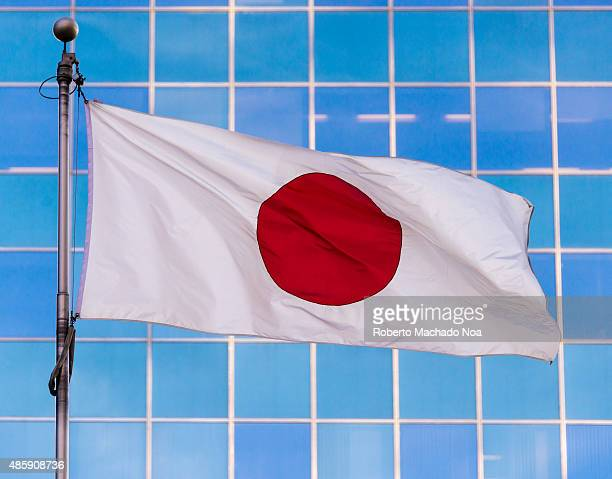 Japanese national flag It is a white flag with a large red circle in the center It is also known as the Hinomaru sun circle