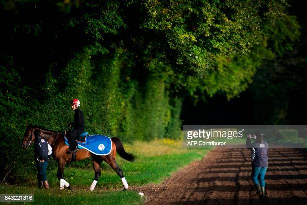 Japanese owned horse Satono Diamond ridden by French jockey Christophe Lemaire takes part in a training session at Chantilly on September 6 ahead of...