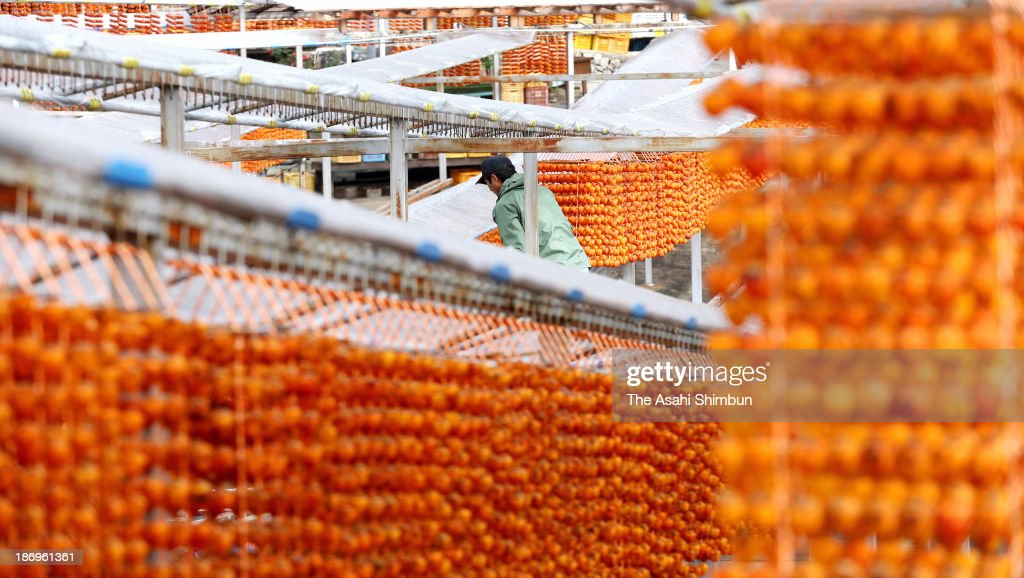 Japanese persimmons are hung to dry on November 4, 2013 in Katsuragi, Wakayama, Japan. The dried persimmon will be shipped to western Japan at the end of the year as decoration of Kagami Mochi, traditional Japanese rice cake to celebrate the New Year.