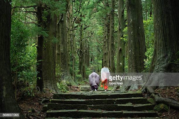 Japanese pilgrims in sacred forest, Kumano Kodo