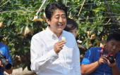 Japanese Prime Minister Shinzo Abe enjoys a piece of pear during his homecoming visit at an orchard on August 13 2013 in Mine Yamaguchi Japan During...