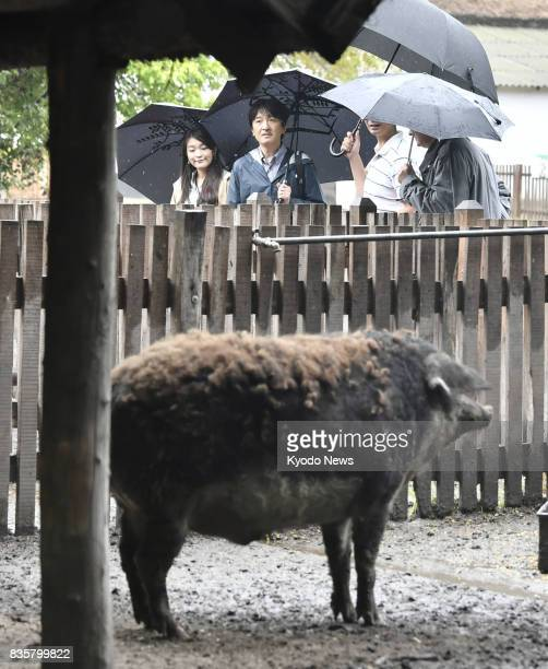 Japanese Prince Akishino and his daughter Princess Mako visit a breeding farm of local pigs in Bugac Hungary on Aug 20 2017 Their trip comes prior to...