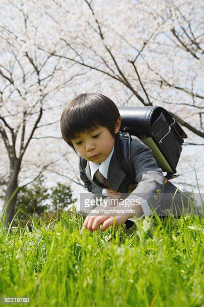 Japanese schoolboy holding bag and plucking grass