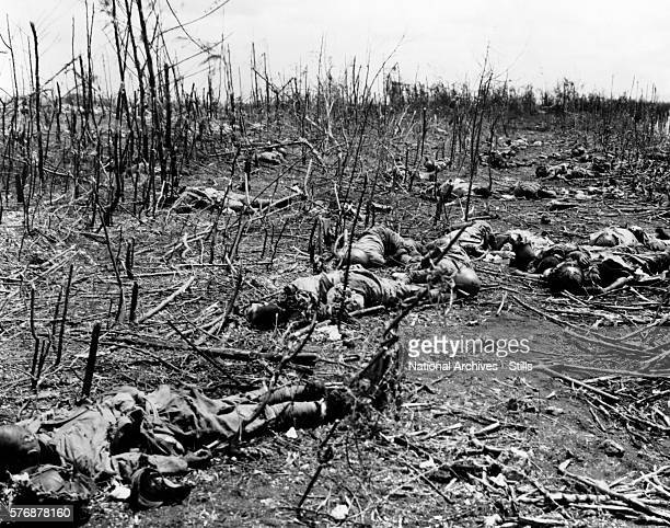 Japanese soldiers killed during World War II lie in a ruined sugar cane field on Tinian Island
