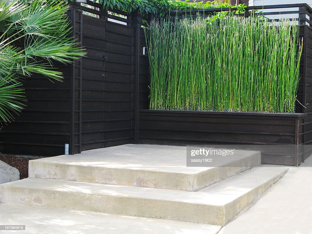 Japanese Style Patio Bamboo Stock Photo Getty Images