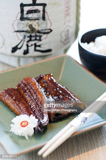 Japanese Style Teriyaki Eel