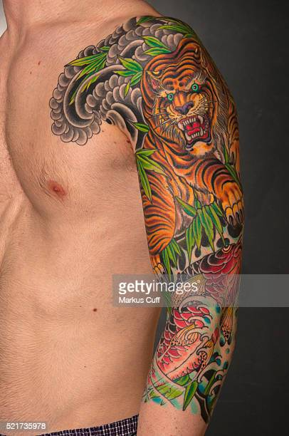 Japanese style tiger arm by Mike Rubendall, Long Island, New York.