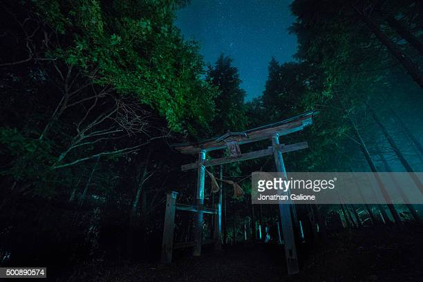 Japanese temple gate at night