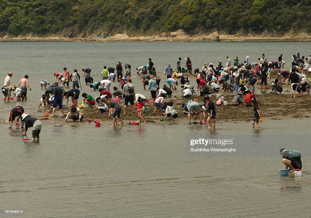 Japanese tourists collect shells at Shinmaiko beach on May 3, 2013 in Himeji, Japan. Shell collecting are one of most famous pleasure events around the country during the longest spring holiday known as 'Golden Week'. Japan holds the Golden Week holidays from April 28 to May 6, during that period millions of Japanese people travel to tourist attractions.