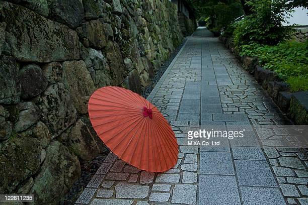 Japanese Umbrella and Hydrangea