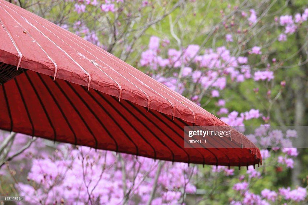 Japanische Regenschirm : Stock-Foto