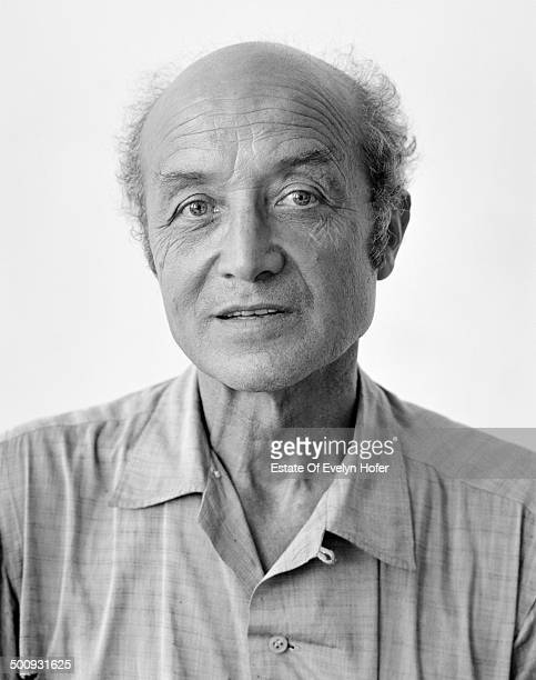 isamu noguchi stock photos and pictures getty images. Black Bedroom Furniture Sets. Home Design Ideas