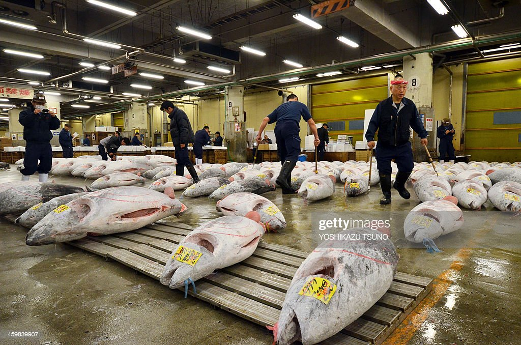 JapanlifestylesocietyfoodTsukijiFEATURE by Harumi OZAWA This picture taken on November 22 2013 shows wholesalers checking frozen bluefin tuna before...
