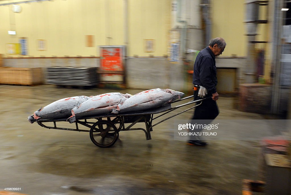 Japan-lifestyle-society-food-Tsukiji,FEATURE by Harumi OZAWA This picture taken on November 22, 2013 shows a wholesaler pulling a cart with frozen bluefin tuna after an auction at the world's largest fish market at Tsukiji in Tokyo. The city of Tokyo plans to move the market to a new location and give the popular tourist draw what advocates say is a badly-need technological update. AFP PHOTO / Yoshikazu TSUNO