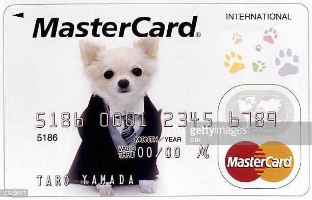 Japan's consumer loan firm Aiful released its credit card with a picture of bigeyed chihuahua Quechan famous character of the company TV commercial...