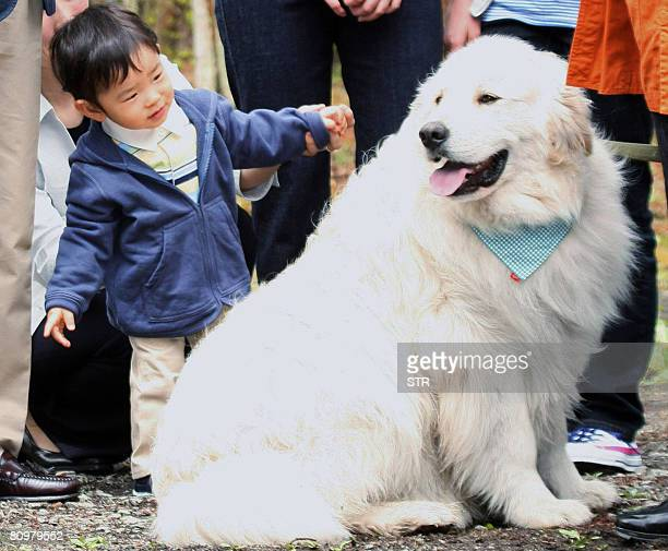 Japan's oneyearold Prince Hisahito son of Prince Akishino and Princess Kiko Japanese imperial family's first male heir to be born in 41 years plays...
