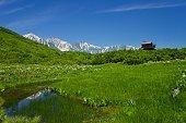Refreshing landscape view in Japan, Nagano.