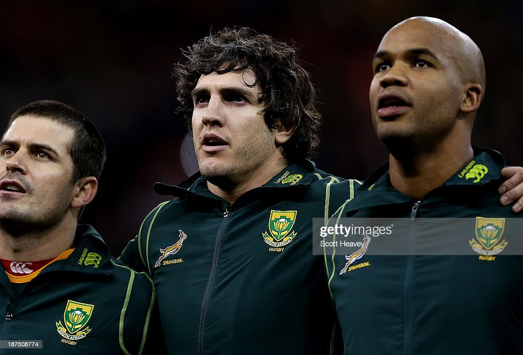 Wales v South Africa - International Match