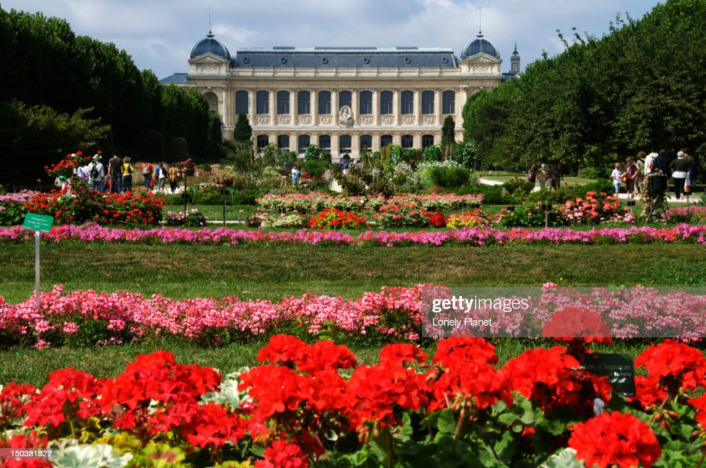 Jardin des plantes with building of grande galerie de for Budas grandes para jardin