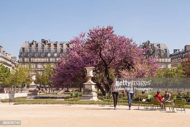 Jardin des Tuileries in Paris, France.