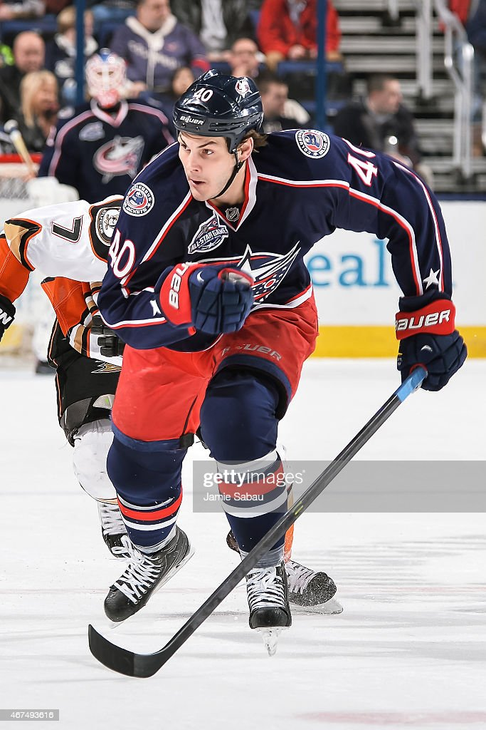 Jared Boll of the Columbus Blue Jackets skates against the Anaheim Ducks on March 24 2015 at Nationwide Arena in Columbus Ohio