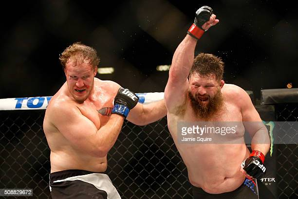Jared Rosholt fights Roy Nelson in their heavyweight bout during the UFC Fight Night event at MGM Grand Garden Arena on February 6 2016 in Las Vegas...