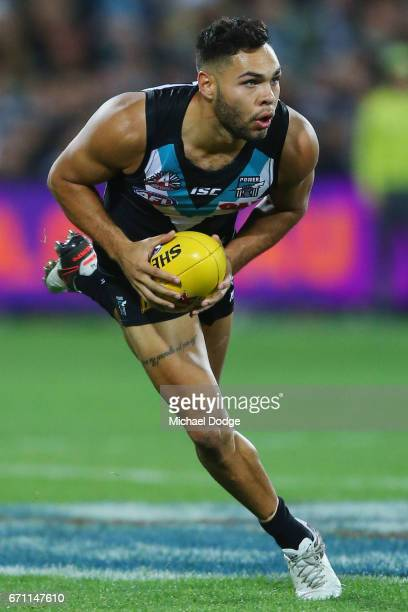 Jarman Impey of the Power looks upfield during the round five AFL match between the Port Adelaide Power and thew Carlton Blues at Adelaide Oval on...