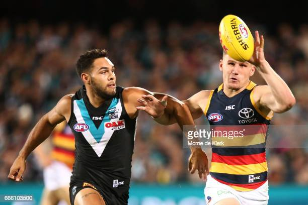 Jarman Impey of the Power Rory Laird of the Crows compete for the ball during the round three AFL match between the Port Adelaide Power and the...