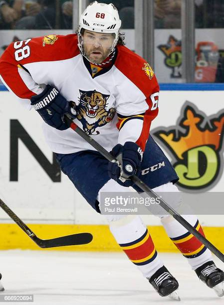 Jaromir Jagr of the Florida Panthers plays in the game against the New York Rangers at Madison Square Garden on March 21 2016 in New York New York