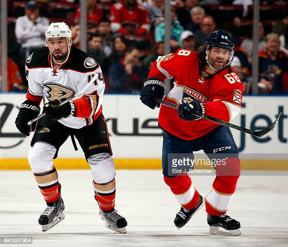 Jaromir Jagr of the Florida Panthers skates for position against Nate Thompson of the Anaheim Ducks at the BBT Center on February 3 2017 in Sunrise...